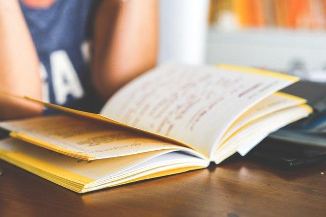student ma działalność gospodarczą - blog efectivo